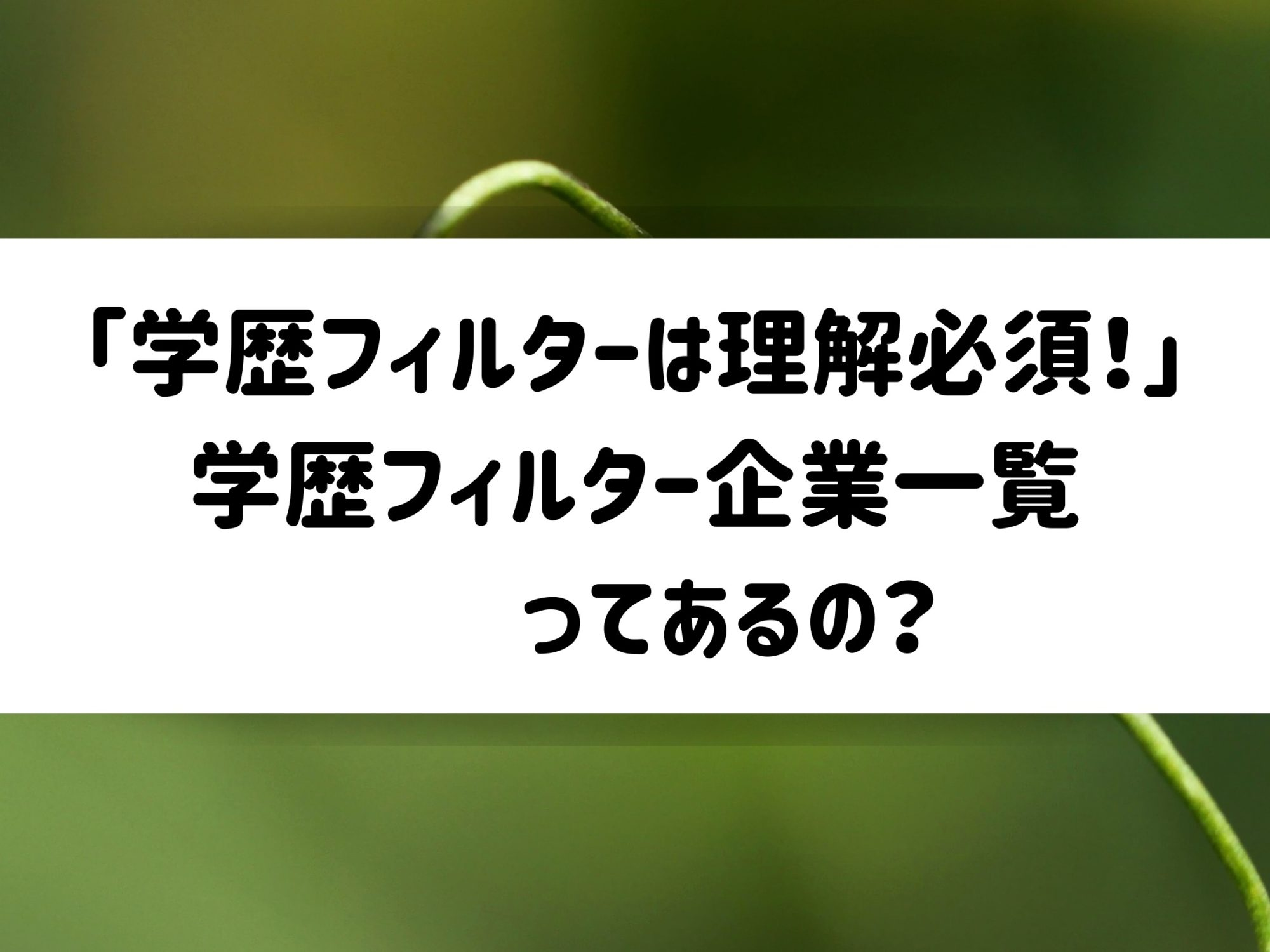 フィルター 学歴